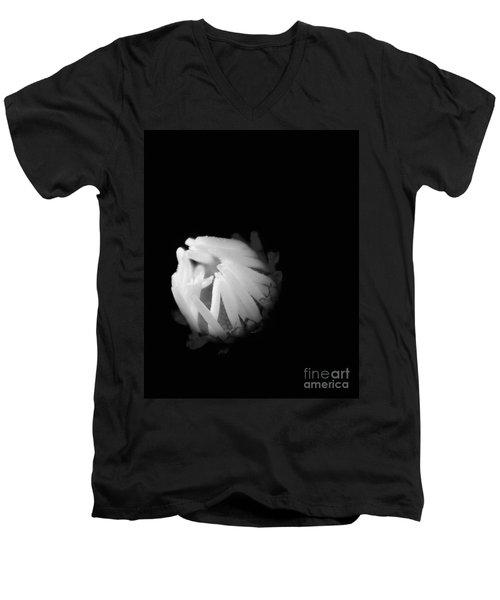 The Coming Light Men's V-Neck T-Shirt