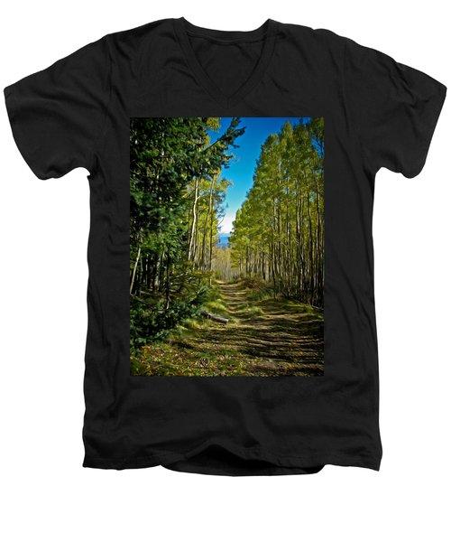 Men's V-Neck T-Shirt featuring the painting The Cool Path Through Arizona Aspens by John Haldane