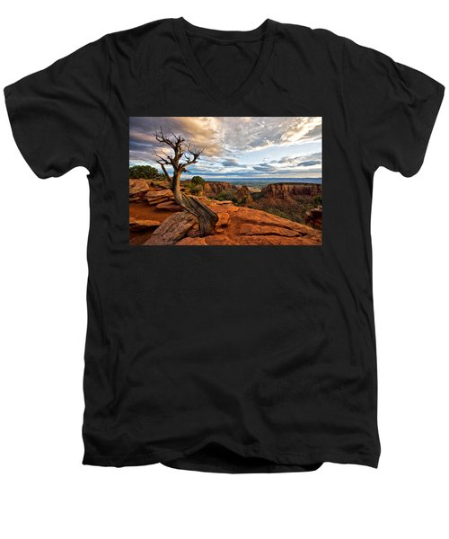 The Crooked Old Tree Men's V-Neck T-Shirt by Ronda Kimbrow