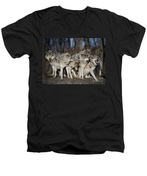 Men's V-Neck T-Shirt featuring the photograph The Gang by Wolves Only