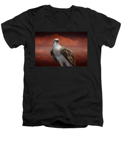 The Glory Of An Eagle Men's V-Neck T-Shirt
