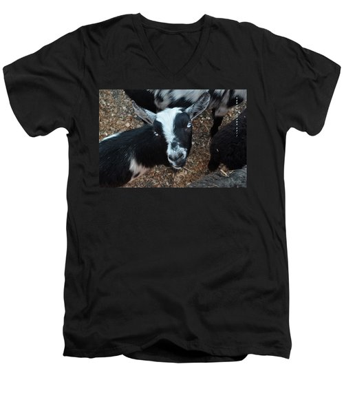 Men's V-Neck T-Shirt featuring the photograph The Goat With The Gorgeous Eyes by Verana Stark