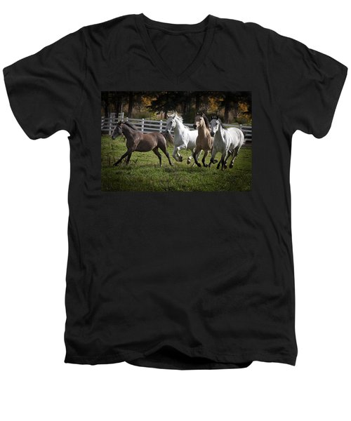 The Goldendale Four Men's V-Neck T-Shirt by Wes and Dotty Weber