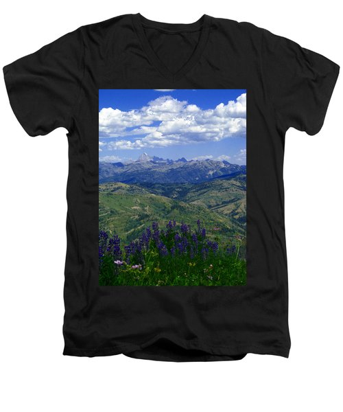 The Grand And Lupines Men's V-Neck T-Shirt