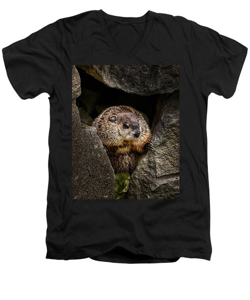 The Groundhog Men's V-Neck T-Shirt