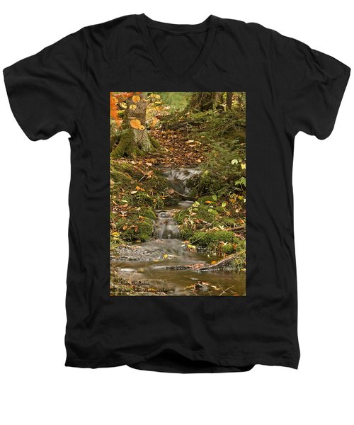 The Little Brook That Could Men's V-Neck T-Shirt