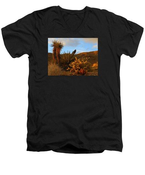 The Living Desert In Winter Men's V-Neck T-Shirt