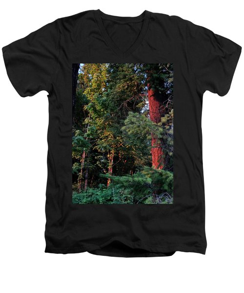 Men's V-Neck T-Shirt featuring the photograph The Magic Hour by Natalie Ortiz