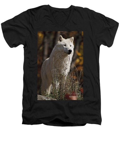 Men's V-Neck T-Shirt featuring the photograph The Sentinel by Wolves Only