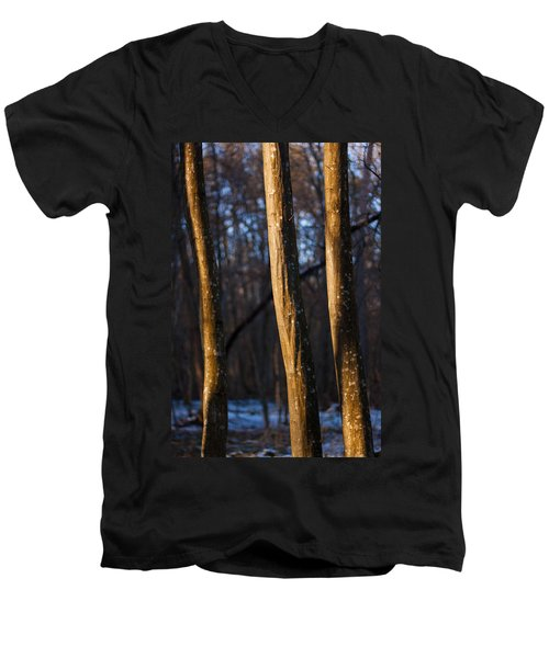 Men's V-Neck T-Shirt featuring the photograph The Three Graces by Davorin Mance