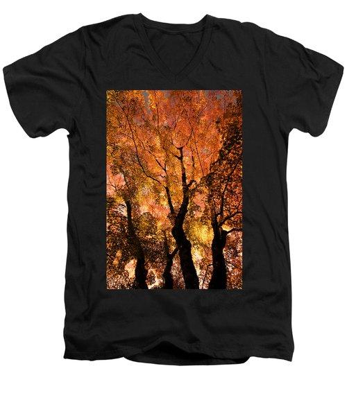 The Trees Dance As The Sun Smiles Men's V-Neck T-Shirt