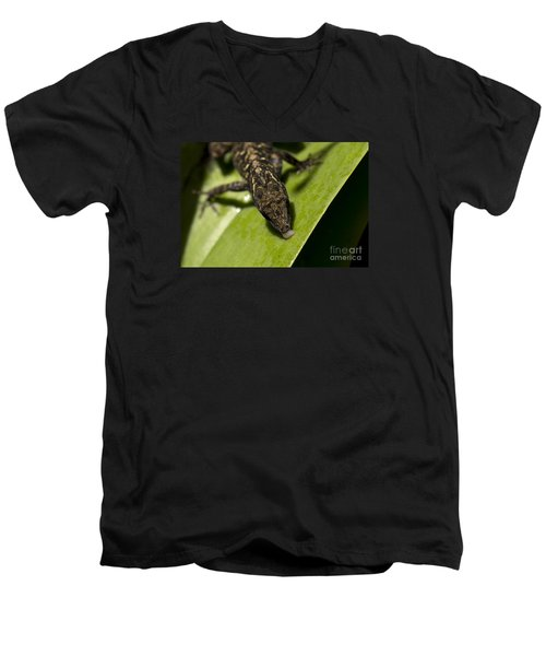Men's V-Neck T-Shirt featuring the photograph Thirsty Brown Anole by Meg Rousher
