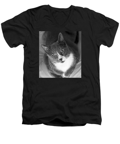 Men's V-Neck T-Shirt featuring the photograph Devotion - Cat Eyes by Jane Eleanor Nicholas