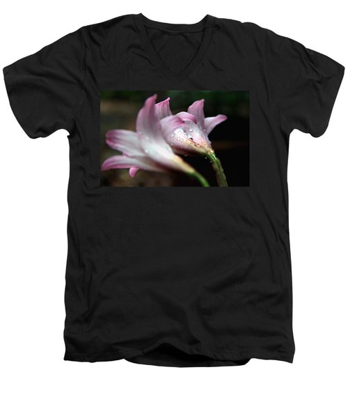 Men's V-Neck T-Shirt featuring the photograph Three Of A Kind Back by Greg Allore