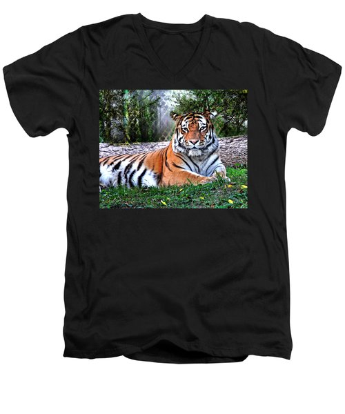 Men's V-Neck T-Shirt featuring the photograph Tiger 2 by Marty Koch