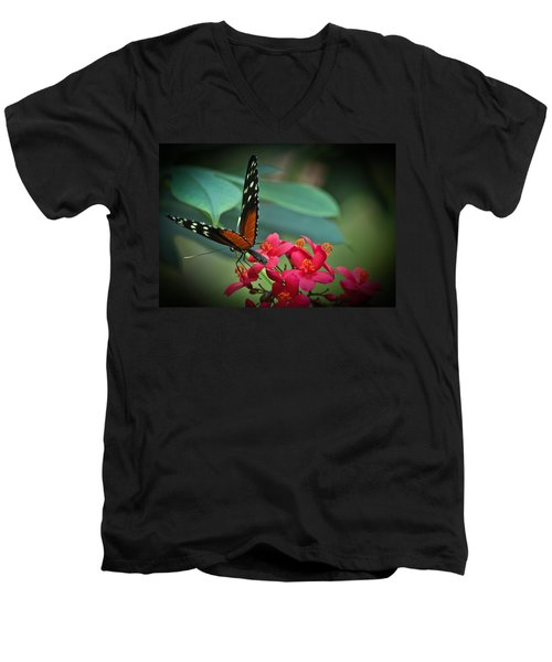 Tiger Longwing Butterfly Men's V-Neck T-Shirt by Joann Copeland-Paul
