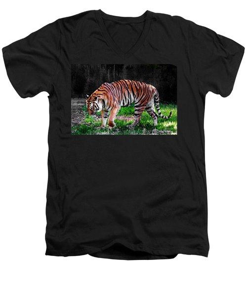 Tiger Tale Men's V-Neck T-Shirt