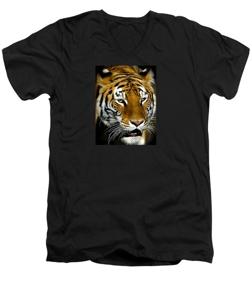 Tiger Tiger Burning Bright Men's V-Neck T-Shirt by Venetia Featherstone-Witty
