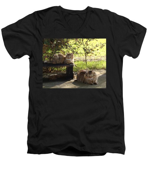 Timber And Cougar Men's V-Neck T-Shirt by Barbie Batson