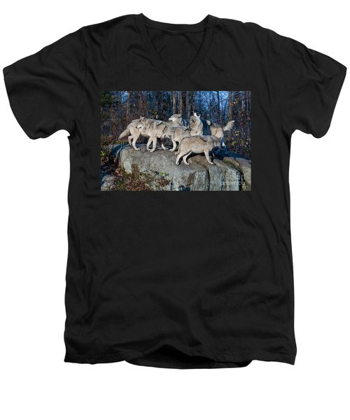 Timber Wolf Pack Men's V-Neck T-Shirt