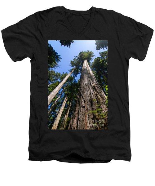 Towering Redwoods Men's V-Neck T-Shirt by Paul Rebmann