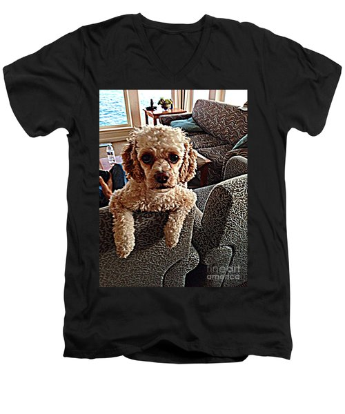 Toy Cockapoodle 1 Men's V-Neck T-Shirt by Richard W Linford