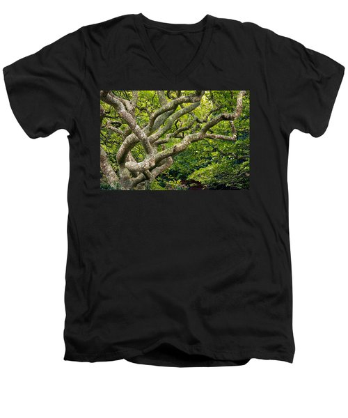 Men's V-Neck T-Shirt featuring the photograph Tree #1 by Stuart Litoff