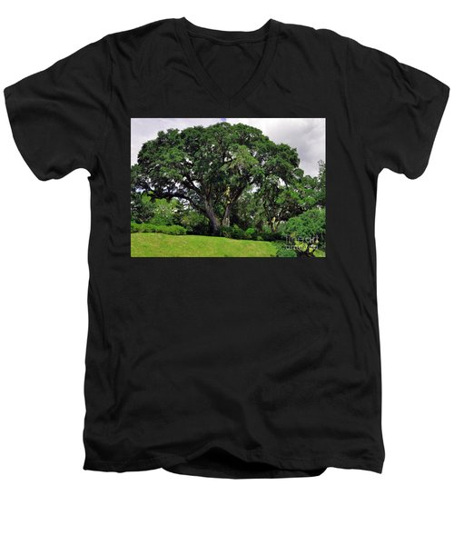 Tree By The River Men's V-Neck T-Shirt by Lydia Holly