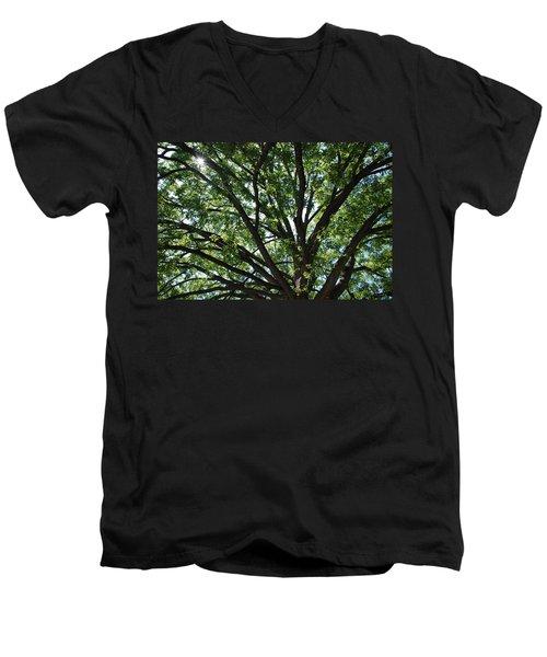 Tree Canopy Sunburst Men's V-Neck T-Shirt