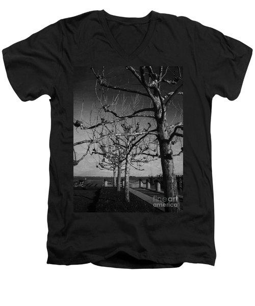 Tree In A Row  Men's V-Neck T-Shirt