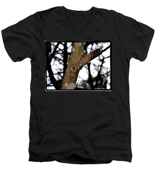 Men's V-Neck T-Shirt featuring the photograph Tree Observation by Tara Potts
