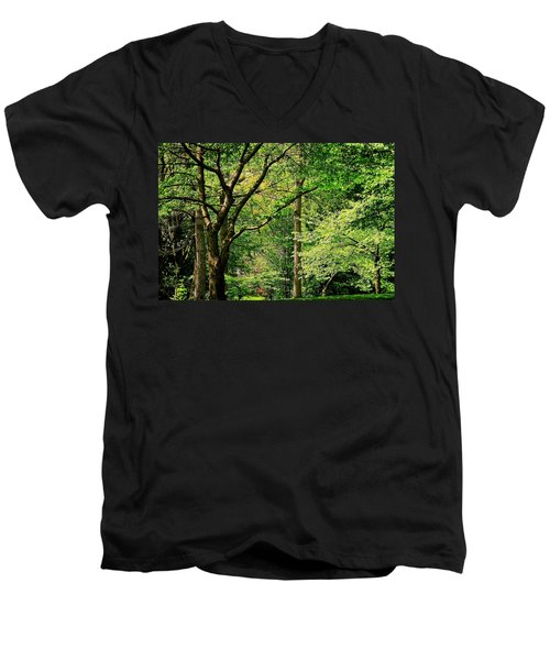 Men's V-Neck T-Shirt featuring the photograph Tree Series 3 by Elf Evans