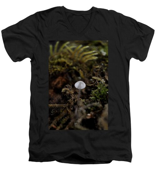 Tree 'shroom Men's V-Neck T-Shirt