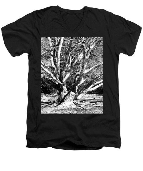 Tree Study In Black N White Men's V-Neck T-Shirt