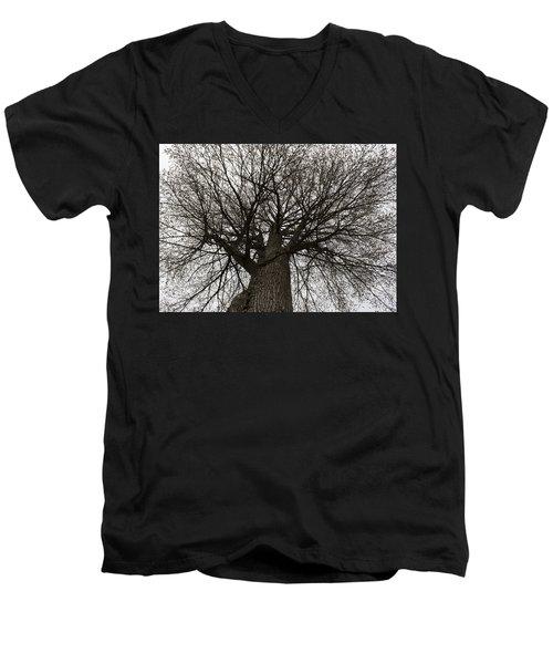 Tree Web Men's V-Neck T-Shirt