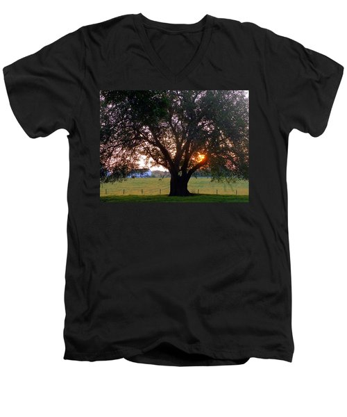 Tree With Fence. Men's V-Neck T-Shirt