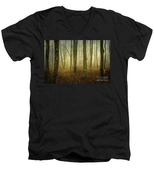 Trees II Men's V-Neck T-Shirt