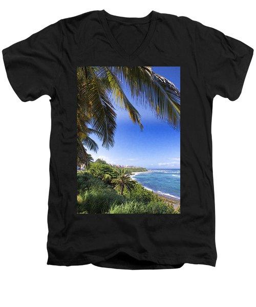 Tropical Holiday Men's V-Neck T-Shirt by Daniel Sheldon