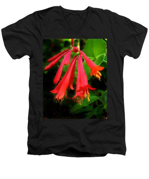 Wild Trumpet Honeysuckle Men's V-Neck T-Shirt