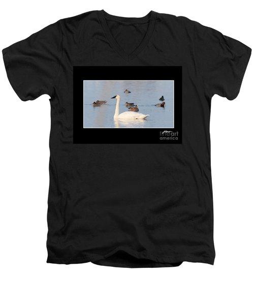 Trumpeter Swan Men's V-Neck T-Shirt