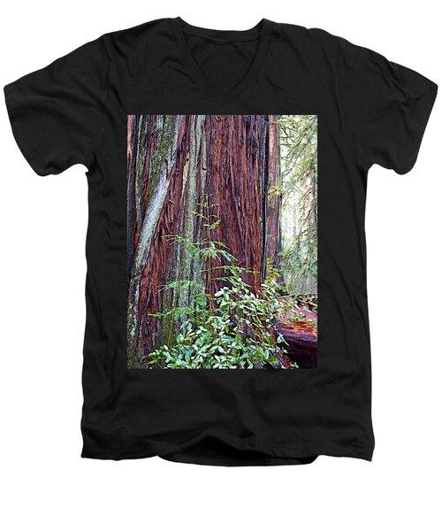 Trunk Of Coastal Redwood In Armstrong Redwoods State Preserve Near Guerneville-ca Men's V-Neck T-Shirt