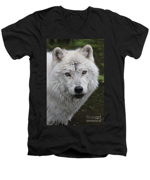 Trusting Men's V-Neck T-Shirt