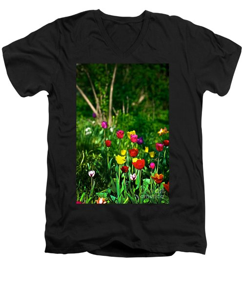 Tulip Rainbow Men's V-Neck T-Shirt