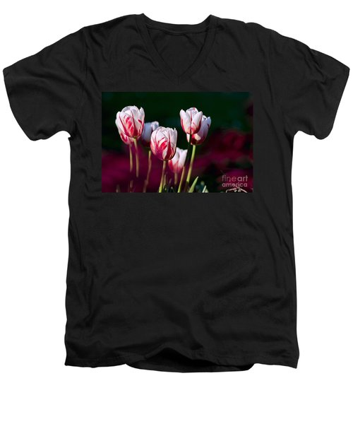 Men's V-Neck T-Shirt featuring the photograph Tulips Garden Flowers Color Spring Nature by Paul Fearn