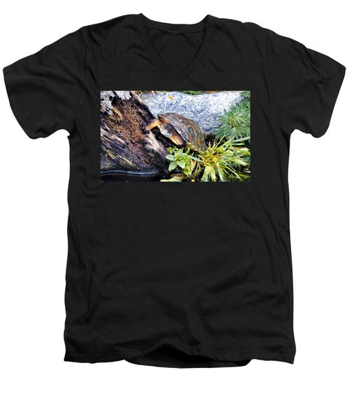 Men's V-Neck T-Shirt featuring the photograph Turtle 1 by Dawn Eshelman