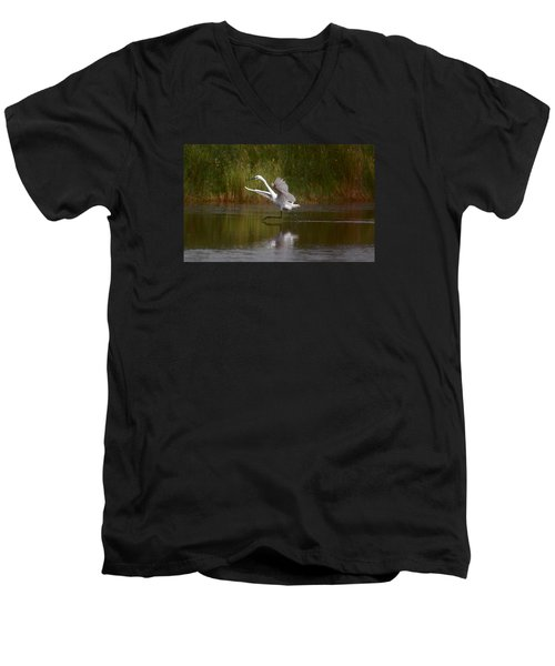 Men's V-Neck T-Shirt featuring the photograph Twinkle Toes by Leticia Latocki