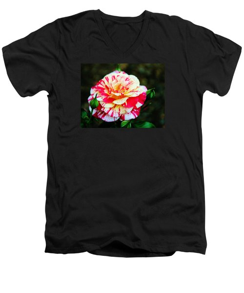 Two Colored Rose Men's V-Neck T-Shirt by Cynthia Guinn