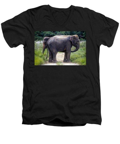 Two Elephants Men's V-Neck T-Shirt
