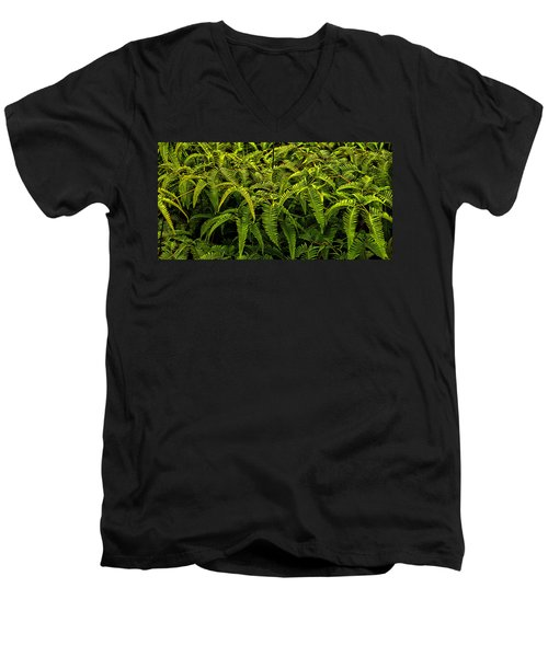 Uluhe Fern Men's V-Neck T-Shirt