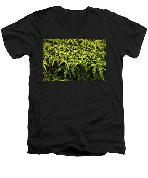 Uluhe Fern II Men's V-Neck T-Shirt